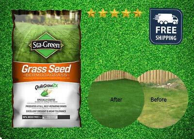 Sta-Green Grass Seed -Bermudagrass- 1lb