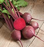 buy David's Garden Seeds Beet Red Ace D125 (Red) 200 Organic Hybrid Seeds now, new 2018-2017 bestseller, review and Photo, best price $8.49