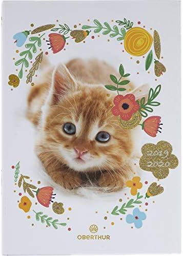Oberthur 2019/2020 - Agenda escolar con diseño de gato (12 x 17 cm): Amazon.es: Oficina y papelería