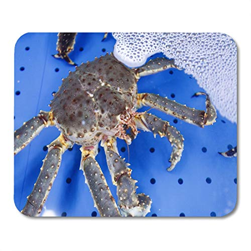 Semtomn Mouse Pad Red Bigsashimi Delicious Freshly Meat of King Crabs Bigsashimiplate Mousepad 9.8