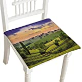 HuaWuhome Dining Chair Pad Cushion vKentucky Country Evening Fashions Indoor/Outdoor Bistro Chair Cushion 30''x30''x2pcs