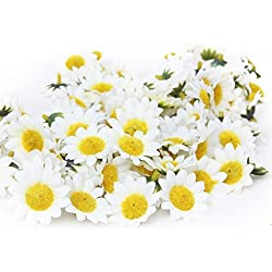 Topixdeals 100x Gerbera Daisy Flowers Heads for DIY Wedding Party (Yellow with White)