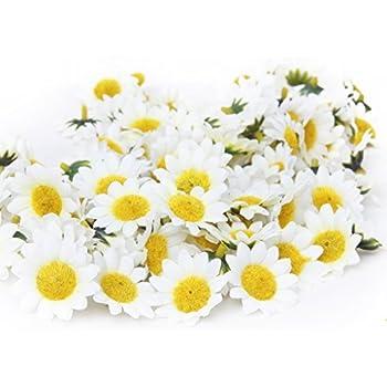 Amazon 24 silk white gerbera daisy flower heads gerber topixdeals 100x gerbera daisy flowers heads for diy wedding party yellow with white mightylinksfo