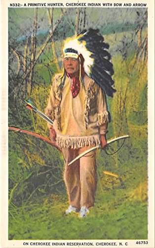 Cherokee Indian with bow and arrow Cherokee, NC, USA Indian Postcard