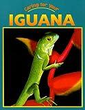 Caring for Your Iguana, Elizabeth Simon, 1590362152