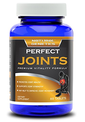 Best Joint Supplement PERFECT JOINTS product image