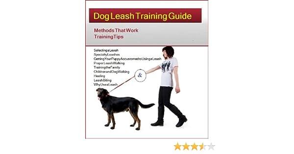 Dog Leash Training Guide