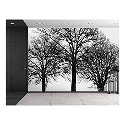 Black Silhouette of Trees with Multiple Branches Wall Mural, With a Professional Touch, Delightful Piece