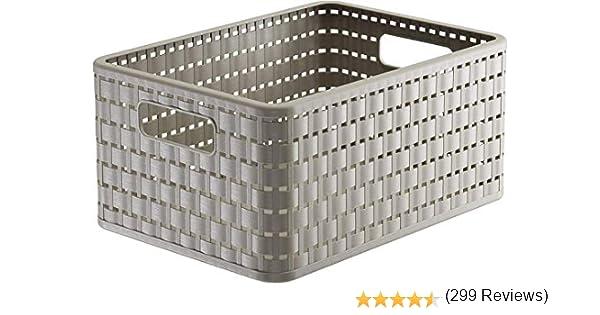 Rotho Country, Caja de almacenamiento 11l en rattan-look, Plástico PP sin BPA, capuchino, A5x, 11l 32.8 x 23.8 x 16.0 cm: Amazon.es: Hogar
