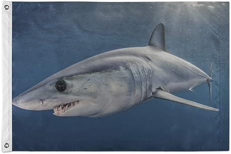 JIUCHUAN Decoración de Banderas Gran tiburón Nadador en el