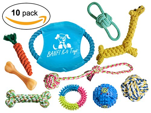 BANFI K-9 Interactive Dog Toys (10-Piece Variety Pack) Chew Ropes, Tug-of-War Pulls, Rubber Water Ball, Training Devices   Tough, Durable Use   Small and Medium Breeds