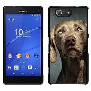 EJOY---Cubierta de la caja de protección para la piel dura ** Sony Xperia Z3 Compact ** --Weimaraner Retrato Bozal perro gris