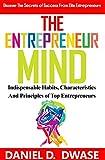 The Entrepreneur Mind: Indispensable Habits, Characteristics And Principles of Top Entrepreneurs