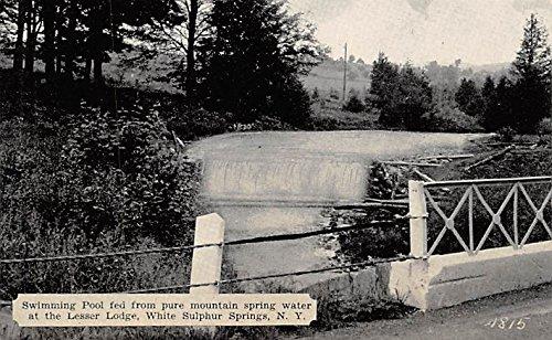 Swimming Pool At the Lesser Lodge White Sulphur Springs, New York, Postcard