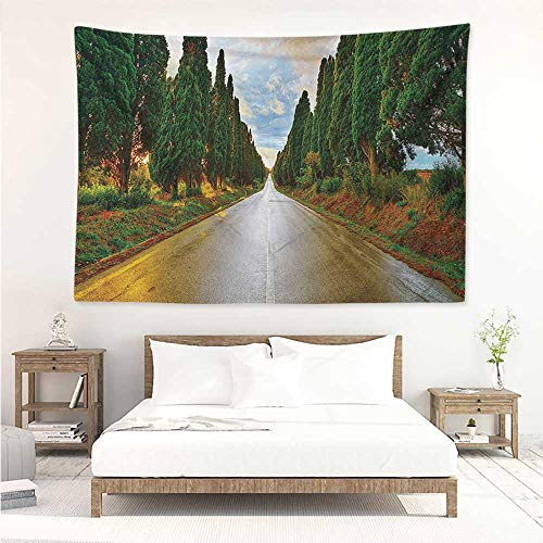 alisos Italian,Dorm Tapestry Boulevard with Trees Old European Village Country Life Destination Artistic Photo 60W x 51L inch Towel Throw Tapestry Decor Multicolor