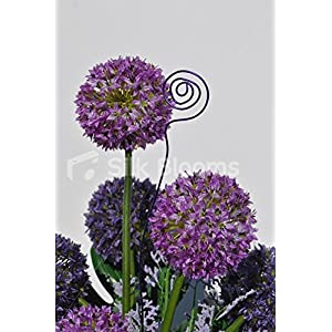 Beautiful Artificial Purple Allium and Green Leaf Floral Table Display w/ Wire Detailing 4