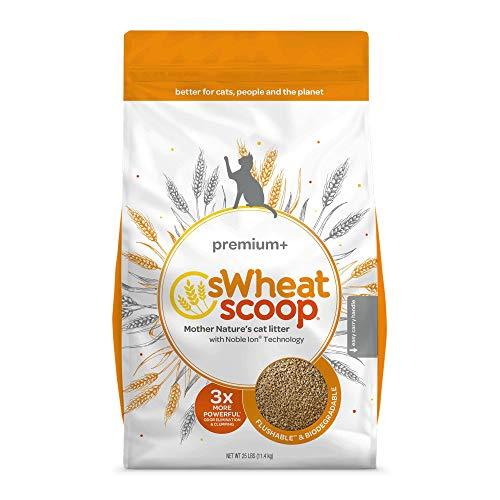 sWheat Scoop Premium+ All-Natural Cat Litter, 25 lbs. ()