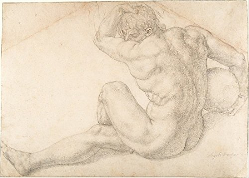 Seated Male Nude (Study for the Martyrdom of St Lawrence) Poster Print by Bronzino (18 x 24)