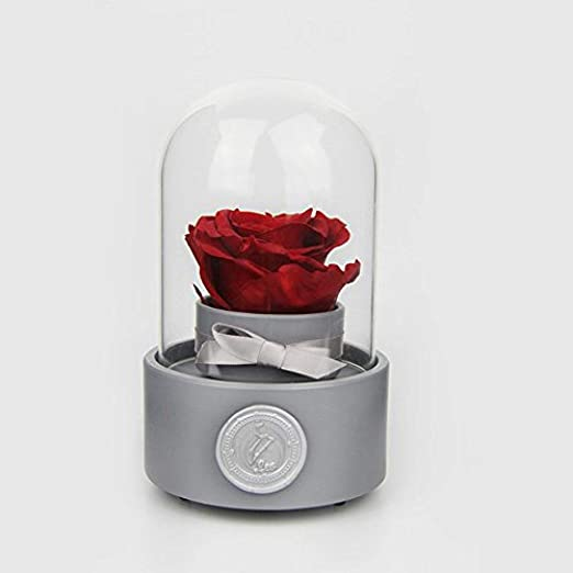 la Bella y la Bestia Rosa Flor eterna,Caja de música Rosa/Flor ...