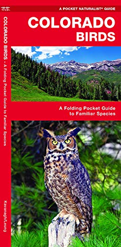 Colorado Birds: A Folding Pocket Guide to Familiar Species (Wildlife and Nature Identification)