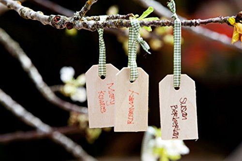 Lynmmax Wood Gift Tags/ Blank Wooden Tags for Wine, Decor, Weddings (pkg of 100)