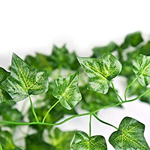 QC Life 84 FT Artificial Ivy Fake Greenery Leaf Garland Plants Vine Foliage Flowers Hanging for Wedding Party Garden Home Kitchen Office Wall Decoration(12 Pack) 3
