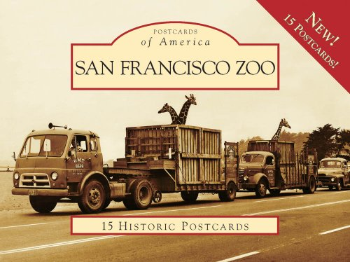 San Francisco Zoo (Postcard of America) (Postcards of America)
