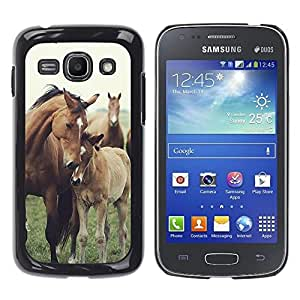 Design for Girls Plastic Cover Case FOR Samsung Galaxy Ace 3 Horse Cub Nature Foal Animal Summer OBBA