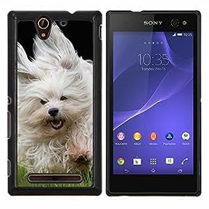 EJOOY---Cubierta de la caja de protección para la piel dura ** Sony Xperia C3 ** --Bichon Havanese Terrier
