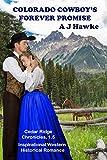 Colorado Cowboy's Forever Promise: Inspirational