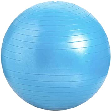 Amazon.com: Yoga Ball Anti-Burst Exercise Ball Exercise Gym ...