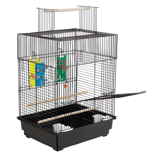 511atlE0HfL - Treat Play-N-Learn Cage Parakeet