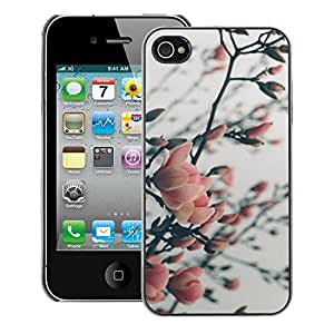 A-type Arte & diseño plástico duro Fundas Cover Cubre Hard Case Cover para iPhone 4 / 4S (Cherry Apple Plum Tree Blossom Spring Pink)