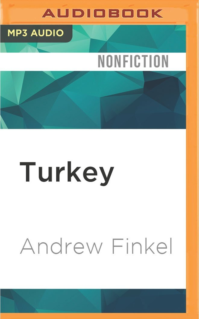 Download Turkey (What Everyone Needs to Know) pdf epub
