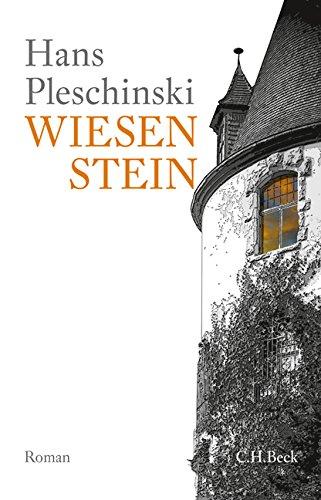 Wiesenstein: Roman