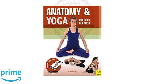 Anatomy & Yoga: 9781782551522: Medicine & Health Science ...