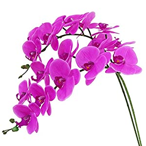 Htmeing 38 Inch Artificial Phalaenopsis Flowers Branches Real Touch (Not Silk) Orchids Flowers for Home Office Wedding Decoration,Pack of 2 (Rose red) 1