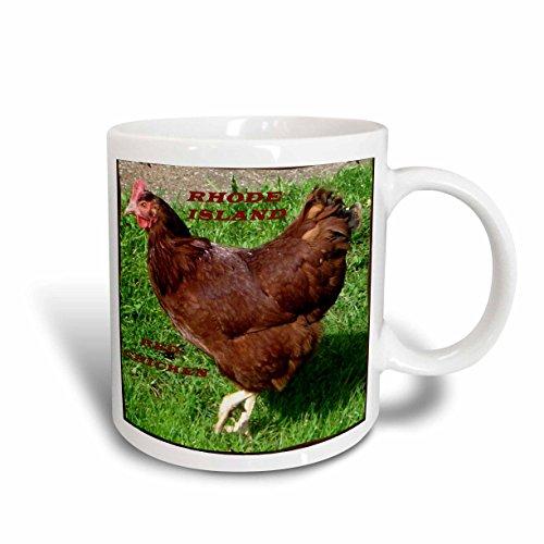 3dRose State Bird of Rhode Island Red Chicken Mug, 11-Ounce