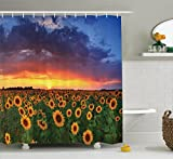 Ambesonne Sunflower Decor Collection, Field of Sunflowers on Sunset Dramatic Sky with Colorful Clouds Scenic Picture, Polyester Fabric Bathroom Shower Curtain, 84 Inches Extra Long, Navy Yellow Green