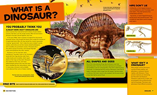 National Geographic Kids Everything Dinosaurs: Chomp on Tons of Earthshaking Facts and Fun by imusti (Image #2)