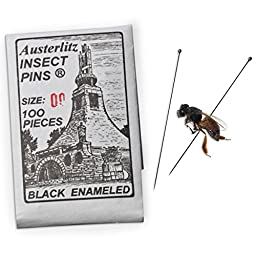 Pack of 100 Insect Pins - Size 00