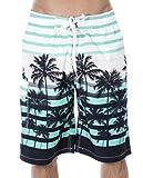 ZENCO Men's Big Coconut Trees Print Swim Trunks, Blue, L