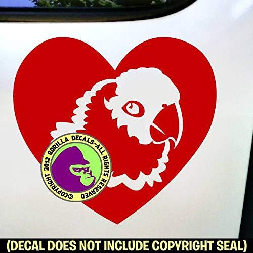 (HEART Conure Parrot Vinyl Decal Sticker D)