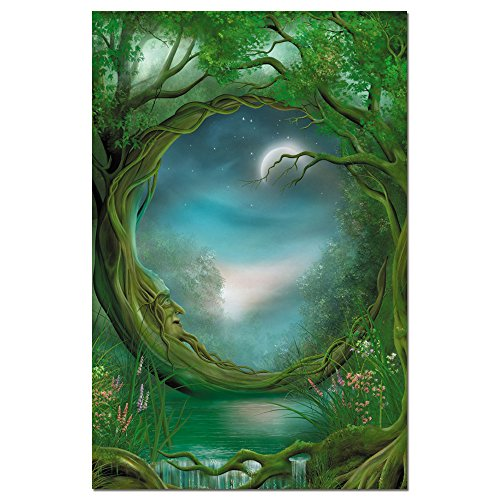"Tree-Free Greetings EcoNotes Stationary- Blank Note Cards with Envelopes, 4"" x 6"", Day/Night, Fairy Themed, Boxed Set of 12 (FS66495)"