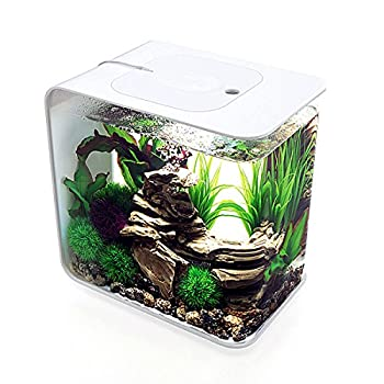 biOrb Flow 30 Aquarium MCR Light  8 Gallon White
