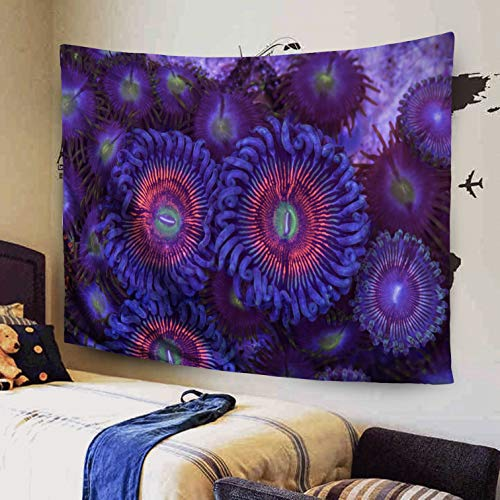 Capsceoll Large 60x50 Inches Size of Tapestry by This Armor God Rock a Colony palythoa polyps zoanthid Tapestries Wall Art for Décor Dorm Bedroom Living -