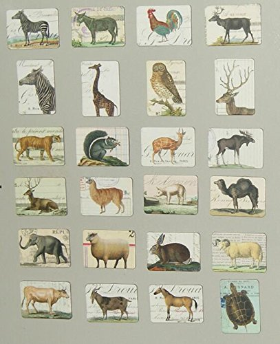 MISWEE 24-pcs magnetic fridge magnets refrigerator sticker home decoration accessories magnet paste arts crafts (animal) by MISWEE (Image #2)