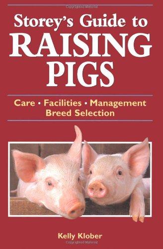 Raising Pigs - 9