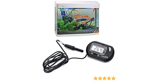Amazon.com: [Free Shipping] Digital Fish Aquarium Water LCD Terrarium Thermometer // Peces de acuario digitales lcd agua terrario termómetro: Garden & ...