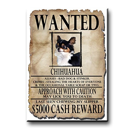 Chihuahua Wanted Fridge Magnet No 2 Funny